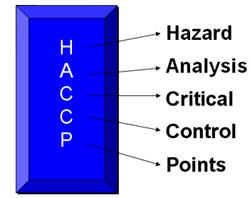 hazard is